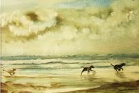 Turner3